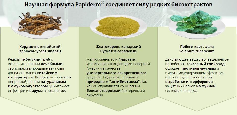 состав папидерм